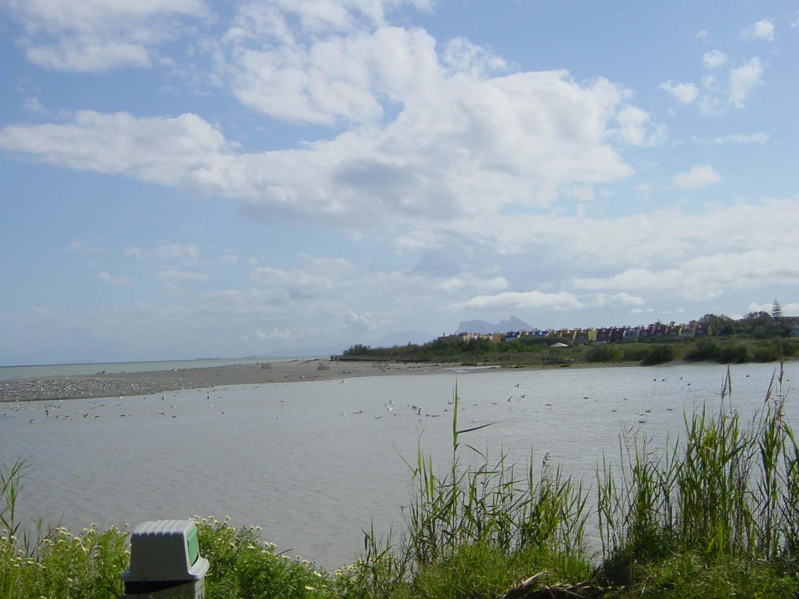 Guadiaro River Estuary & Torreguadiaro - 126.6KB